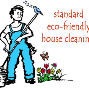 Book a Standard Cleaning